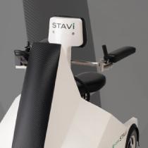 STAVI2_s