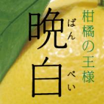 banpeiyu_s